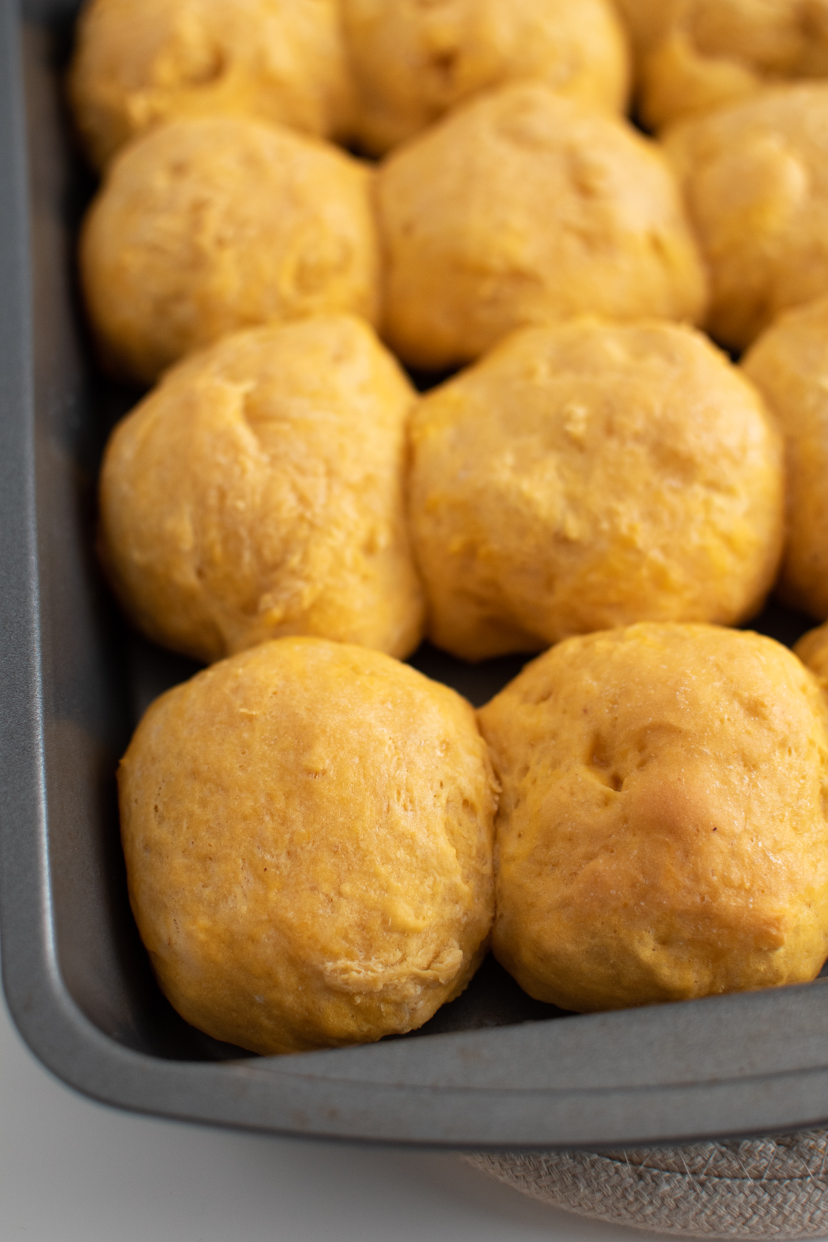 Close up of several pumpkin dinner rolls in a metal cake pan.