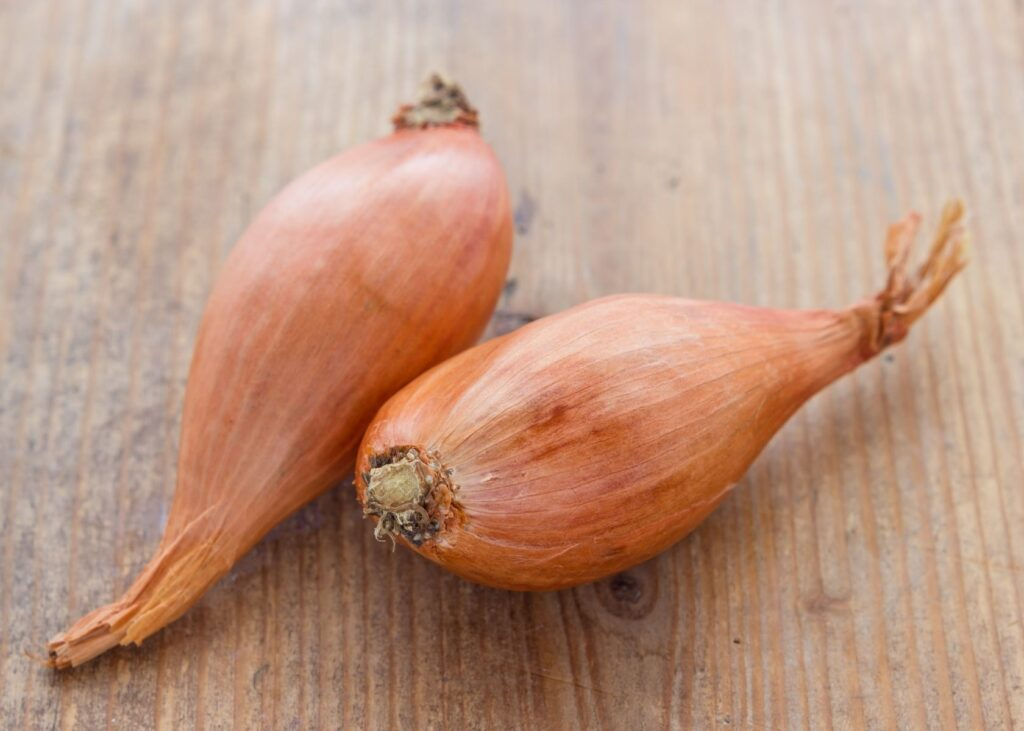 Two shallots on wooden countertop.