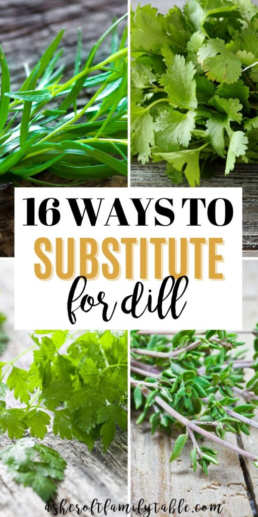 Pinterest graphic with text and collage of herbs used as a substitute for dill.