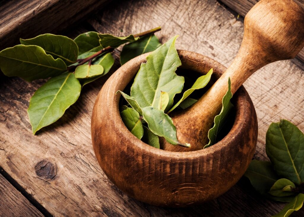 Bay leaves in wooden mortar and pestle on wood table.