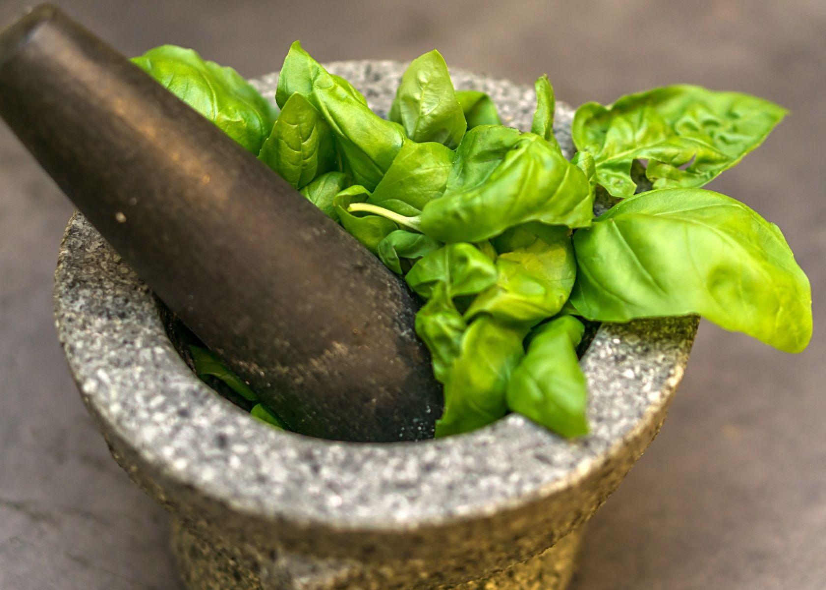 Close up fresh basil in mortar and pestle.