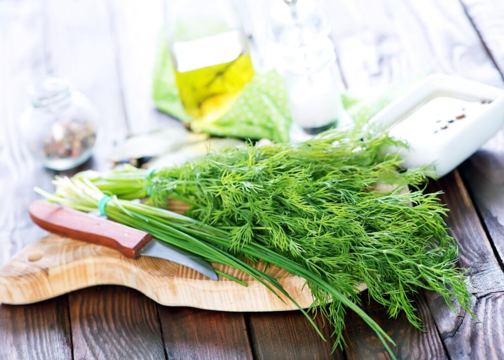 Fresh dill on wooden cutting board next to a knife and other green herbs.