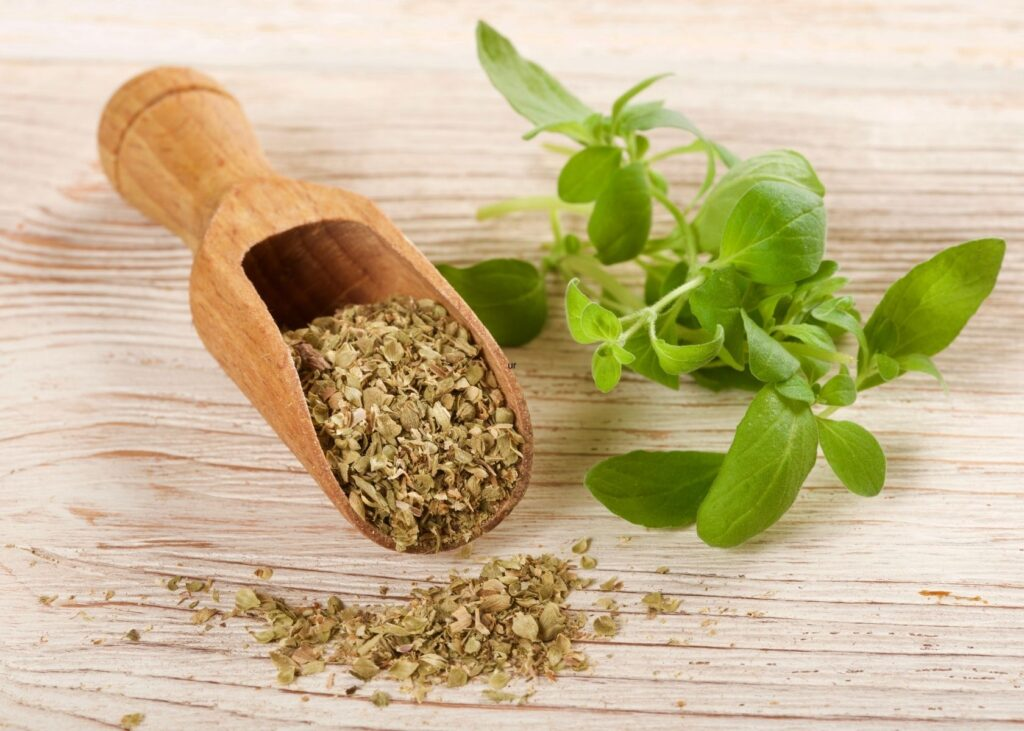 Fresh oregano leaves next to seeds in wooden scoop on piece of wood.
