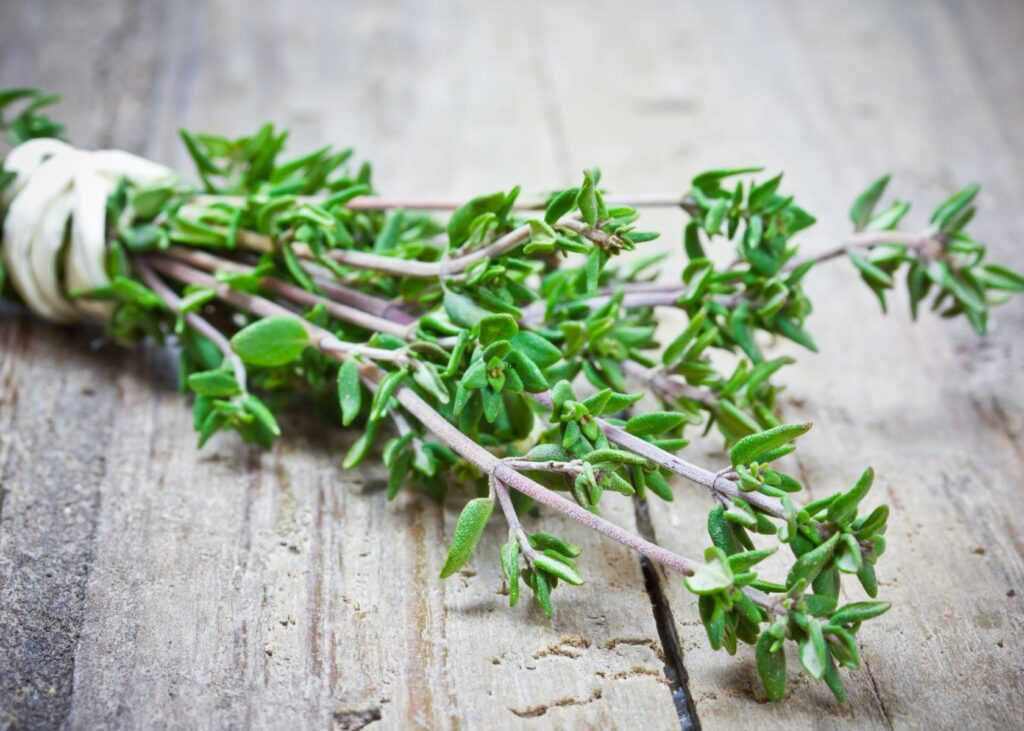 Thyme stems wrapped in bundle with twine on rustic wooden table.