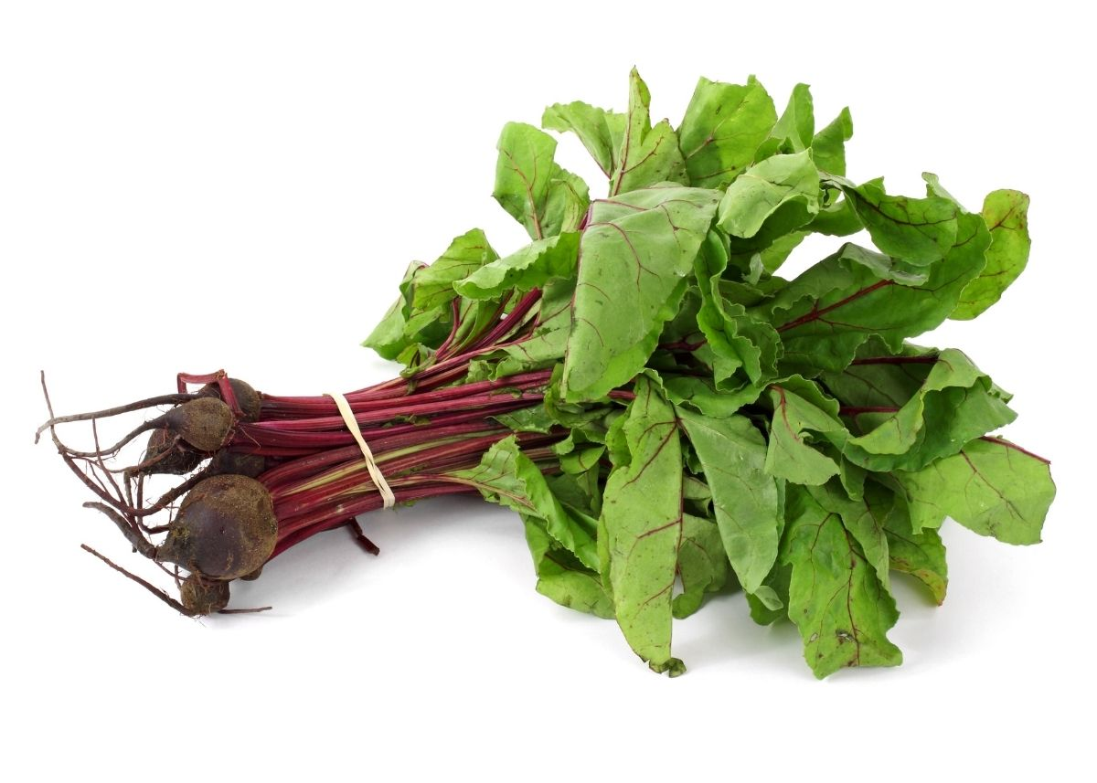 Bundle of beet greens with stalk and bulb sitting in front of white background.