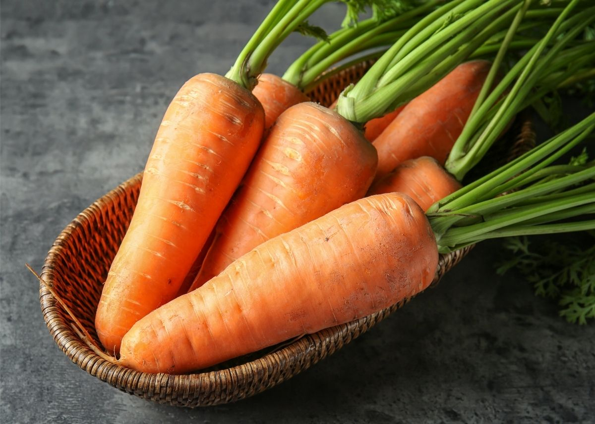Several large, whole carrots with green stems piled in a wooden bowl.