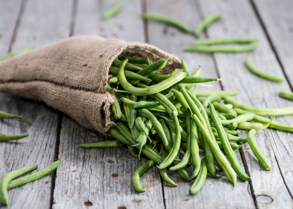 Large pile of fresh, whole green beans spilling from a burlap sack.