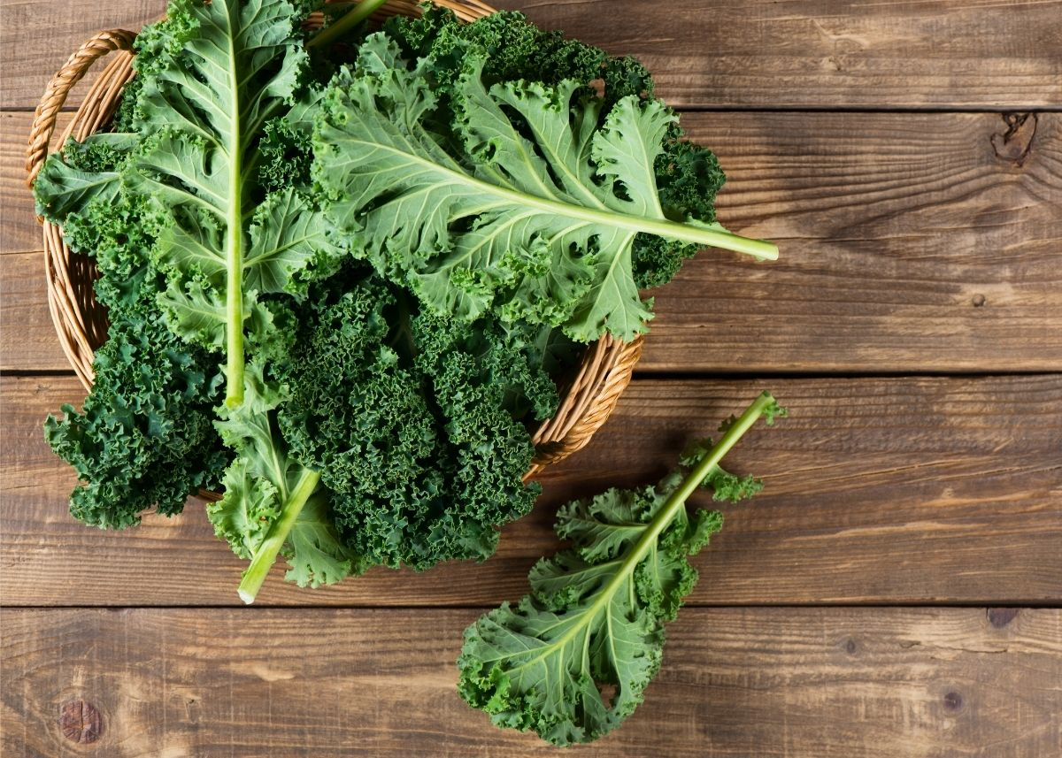 Large kale leaves piled into wooden bowl on rustic wooden table top.