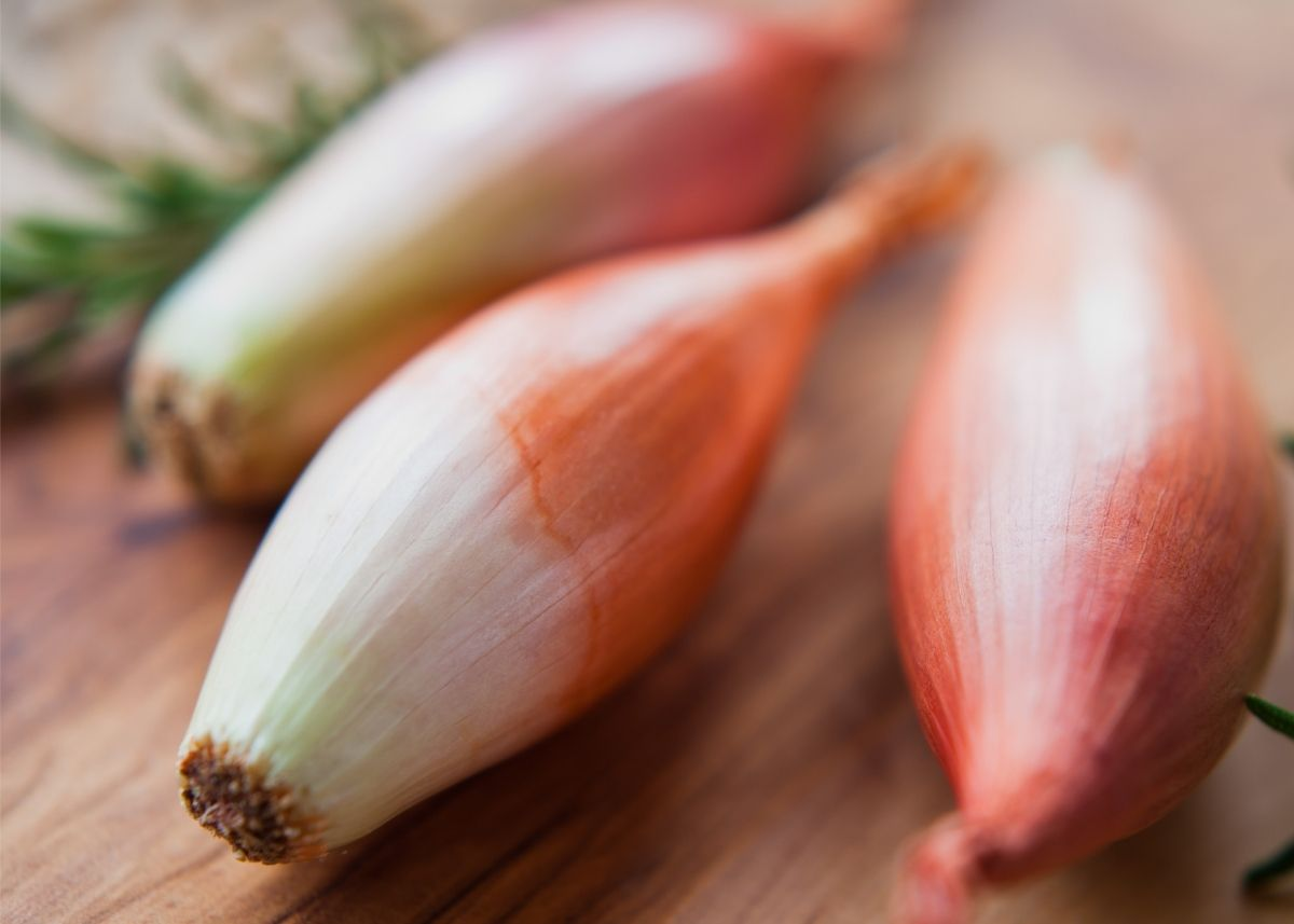 Close up of three large shallots sitting on a rustic wooden table.