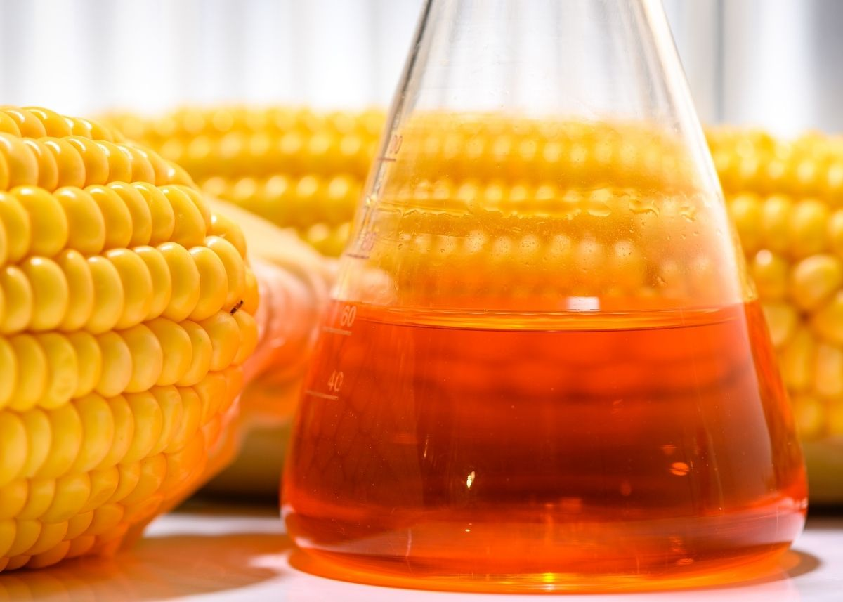 Close up photo of corn syrup in a glass beaker surrounded by fresh ears of corn.