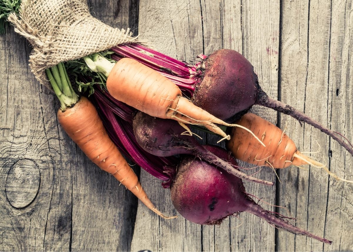 Several fresh carrots and beets held together with burlap cloth on a rustic wooden table.