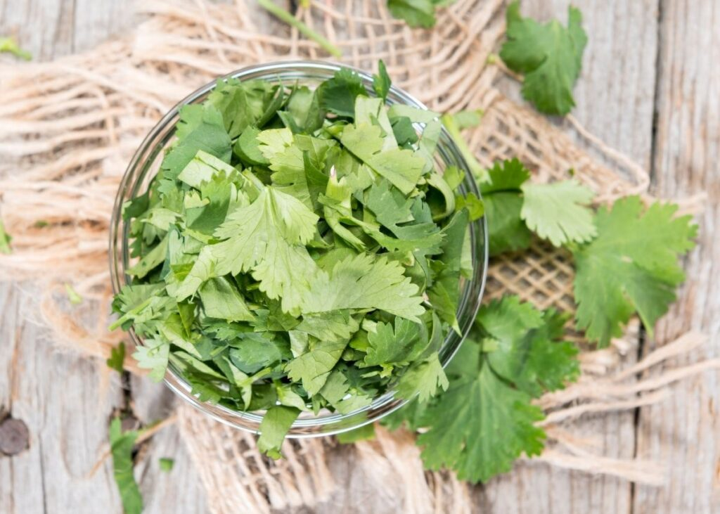 Glass bowl piled high with cilantro leaves on a piece of burlap.